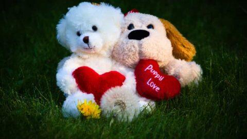 Amigos que se Enamoran